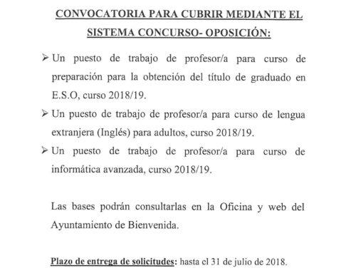 PROGRAMA APRENDIZAJE A LO LARGO DE LA VIDA. PROFESORES/AS