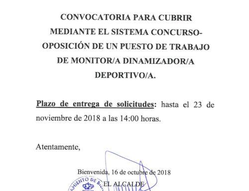BASES MONITOR/DINAMIZADOR DEPORTIVO
