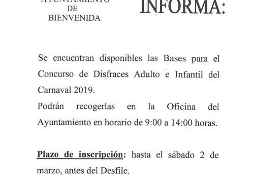 Carnaval 2019: Bases Concurso de Disfraces Adulto e Infantil.