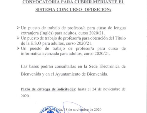 Convocatoria para cubrir mediante el sistema concurso-oposición de los profesores/as de PALV