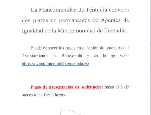 Convocatoria de dos plazas no permanentes de Agentes de Igualdad de la Mancomunidad de Tentudía.